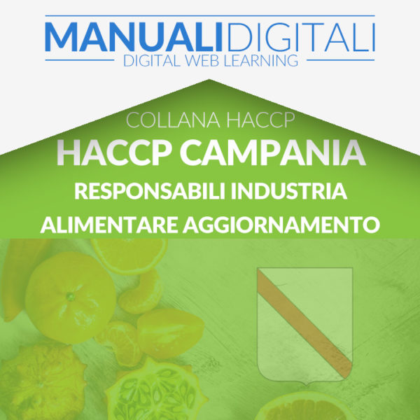 CAMPANIA H6